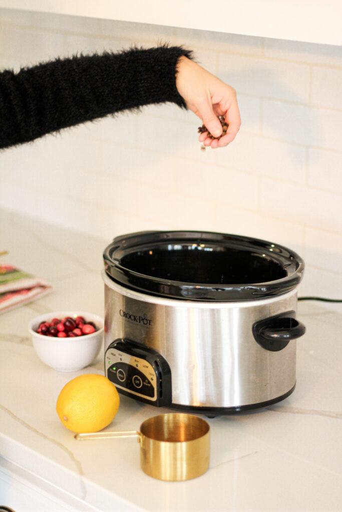 non toxic DIY crockpot Potpourri